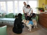 IMG_1380 - canisterapeutiský pes Alex.JPG